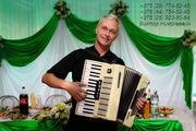 Баянист-аккордеонист на юбилей в Минске