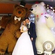 Большие Медведи Панда на свадьбу день рождения юбилей корпоратив